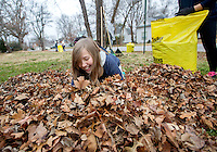 STAFF PHOTO JASON IVESTER --12/13/2014--<br /> Hailey Bridges, Rogers Heritage freshman, gathers raked leaves to bag at a residence near the school on Saturday, Dec. 13, 2014, as part of the school's Community Leaf Removal Day.