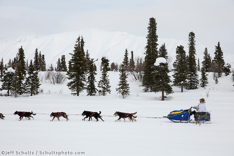 Mike Williams runs on Puntilla Lake a few hundred yards from checking in at the Rainy Pass checkpoint during Iditarod 2013.  Monday March 4, 2013