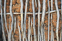 detail of a textured adobe and stick wall from Yucatan, Mexico. 07-02
