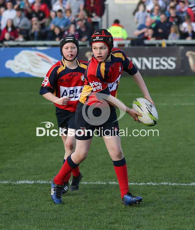 Saturday 21 April 2018 | Ulster Rugby vs Glasgow Warriors<br /> <br /> Mini-Rugby during the rearranged Guinness PRO14 clash between Ulster Rugby and Glasgow Warriors at Kingspan Stadium, Ravenhill Park, Belfast, Northern Ireland. Photo by John Dickson / DICKSONDIGITAL