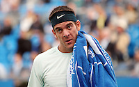 11.06.13 London, England. Juan Martin Del Potro during the The Aegon Championships from the The QueenÕs Club in West Kensington.