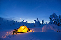 Glowing yellow tent on the snow in the Boreal forest, Interior, Alaska.