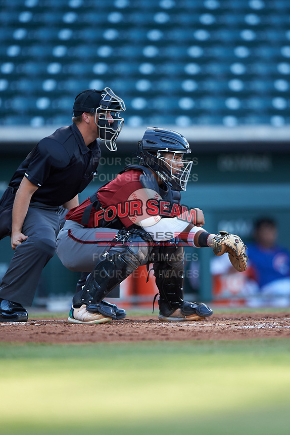 AZL Dbacks catcher Oscar Santos (8) in front of home plate umpire Jarrod Moehlmann during an Arizona League game against the AZL Cubs 2 on June 25, 2019 at Sloan Park in Mesa, Arizona. AZL Cubs 2 defeated the AZL Dbacks 4-0. (Zachary Lucy/Four Seam Images)