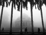 2009_02_ Lodhi Gardens, New Delhi