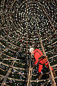 10/11/12 ..Photo taken looking up inside the giant tree, shows John Vasey (50) abseiling around the the inside of of the structure checking the wiring...<br />