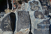 Collection of petroglyphs preserved at Ginkgo Petrified Forest State Park Museum in Vantage, WA. As hydroelectric dams were installed on the Columbia River, these petroglyphs on basalt were removed from shoreline sites.