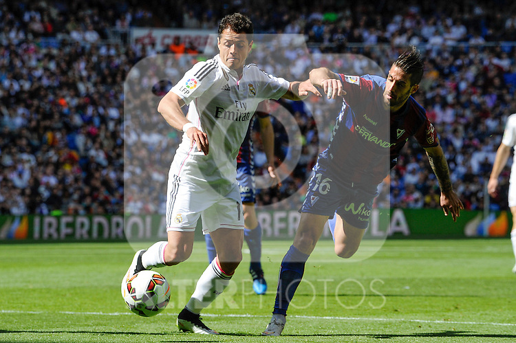 Real Madrid´s Chicharito and Eibar´s Manuel Castellano during 2014-15 La Liga match between Real Madrid and Eibar at Santiago Bernabeu stadium in Madrid, Spain. April 11, 2015. (ALTERPHOTOS/Luis Fernandez)