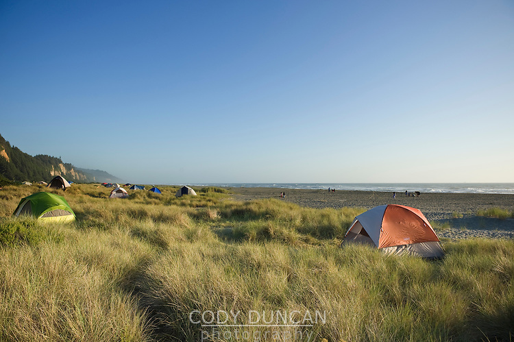 Prairie Creek Redwoods state park, California - Tents camping on dunes at Gold Bluffs Beach campground