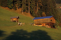 Europe/Autriche/Tyrol/Alpbach: Chalets dans les alpages