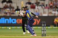 1st November 2019; Melbourne Cricket Ground, Melbourne, Victoria, Australia; International T20 Cricket, Australia versus Sri Lanka; Oshada Fernando of Sri Lanka flicks the ball for a run - Editorial Use