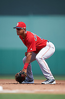 Boston Red Sox Pedro Castellanos (12) during an Instructional League game against the Minnesota Twins on September 23, 2016 at JetBlue Park at Fenway South in Fort Myers, Florida.  (Mike Janes/Four Seam Images)