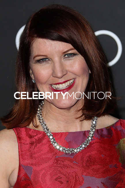 LOS ANGELES, CA - JANUARY 09: Kate Flannery at the Audi Golden Globe Awards 2014 Cocktail Party held at Cecconi's Restaurant on January 9, 2014 in Los Angeles, California. (Photo by Xavier Collin/Celebrity Monitor)