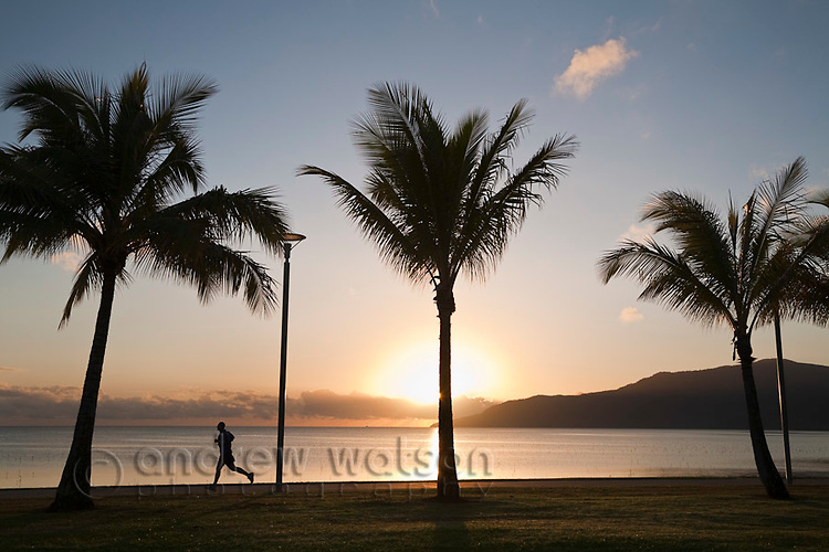 Early morning jogger on the Esplanade.  Cairns, Queensland, Australia