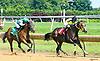 Bella Nusta winning at Delaware Park on 7/26/17