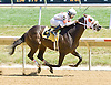 Drivebymedia winning at Delaware Park on 7/25/12