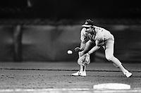 Carney Lansford of the Oakland Athletics during a 1989 season game at Anaheim  Stadium in Anaheim,California.(Larry Goren/Four Seam Images)