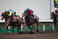 SHA TIN,HONG KONG-MAY 02: Barrier trial at Sha Tin Racecourse on May 2,2017 in Sha Tin,New Territories,Hong Kong (Photo by Kaz Ishida/Eclipse Sportswire/Getty Images)