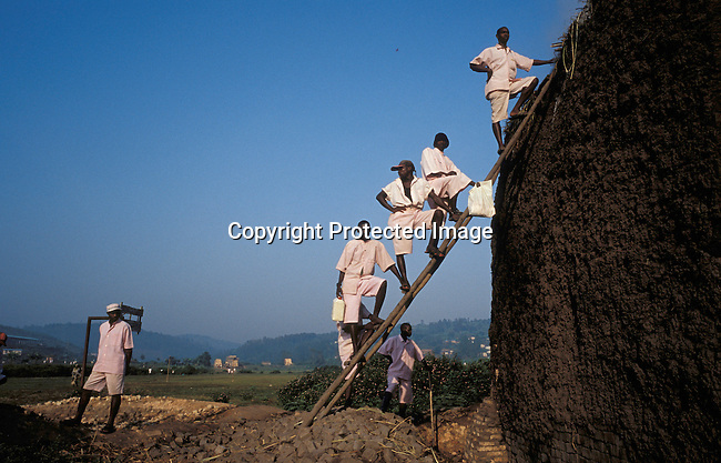 dicorwa00101.Country Rwanda. Prisoners accused of the Genocide in 1994, working in a brick making factory outside Butare Prison in Butare, Rwanda. About 100.000 prisoners accused of the genocide are still sitting in prisons 9 years later. Rwanda is currently trying to cope with these huge problems and some prisoners that have confessed to crimes can be tried in village trials, Gacacas, who are now operating all over the country..©Per-Anders Pettersson/iAfrika Photos