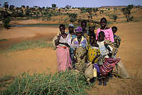 Near Niamey, Niger. Fulani Girls Gathering Edible Leaves for Food in the Sahel Landcsape near the Niger River.