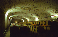 The barrel aging cellar with vaulted concrete ceiling.  Chateau Mont-Redon, Chateauneuf-du-Pape Châteauneuf, Vaucluse, Provence, France, Europe