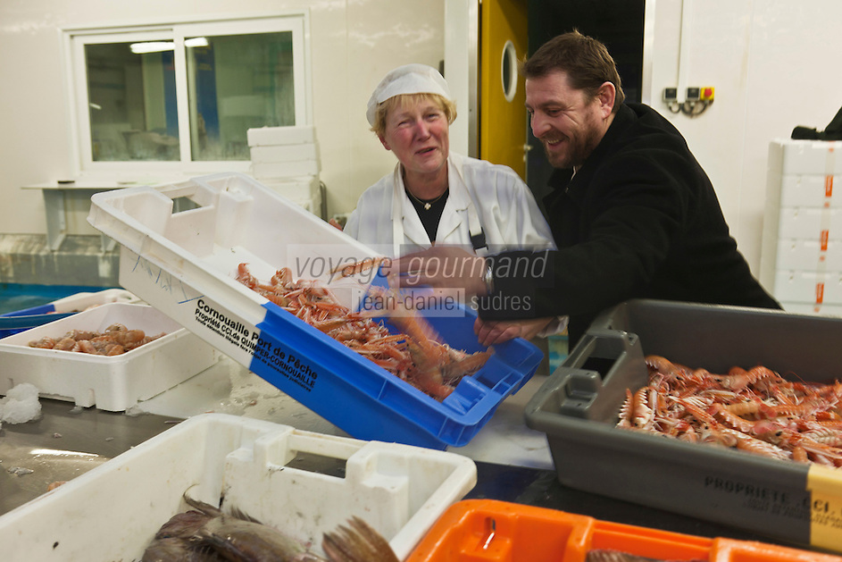 Europe/France/Bretagne/29/Finistère/Loctudy: Olivier Bellin de l'Auberge des Glazicks à Plomodiern choisit ses poissons à la Marée d'Armor à Loctudy [Non destiné à un usage publicitaire - Not intended for an advertising use]