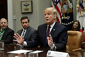 United States President Donald J. Trump talks to the media during a fair and honest pricing in healthcare roundtable at the White House on January 23, 2019 in Washington, DC. <br /> Credit: Yuri Gripas / Pool via CNP