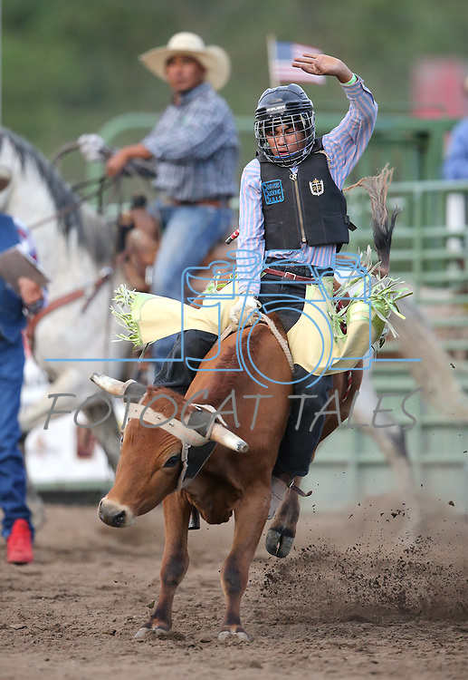 Carlos Gonzales competes in the steer riders portion of the 5th Annual Carson City Bulls, Broncs &amp; Barrels event at Fuji Park, in Carson City, Nev., on Saturday, July 29, 2017. <br />Photo by Cathleen Allison/Nevada Photo Source