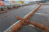 A carpark beginning to be reclaimed by weeds near Namie Station inside the Fukushima exclusion zone, Namie, Fukushima, Japan. Wednesday March 9th 2016. The Great East Japan Earthquake on March 11th 2011 was followed by a massive tsunami that levelled much of the Tohoku coast in north east Japan, killing around 18,000 people and causing meltdowns and explosions at the Fukushima Daiichi nuclear power station leading to the contamination and evacuation of a 20 kilometre exclusion zone around the plant.
