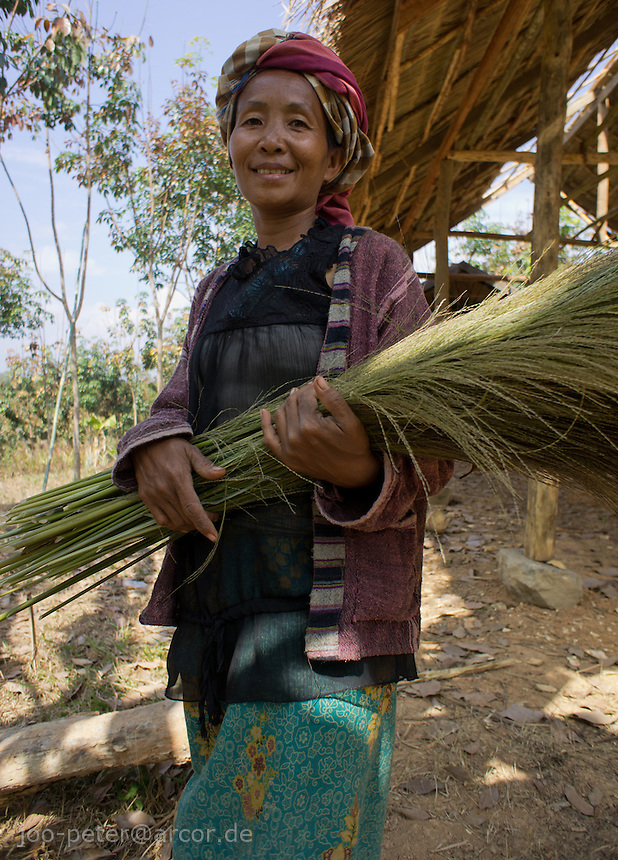 woman ina  in a small village close to Luang Prabang, Laos, 2012. She carries a sort of grass used for making traditional asian brooms. This grass was just harvested in the region here in January 2012