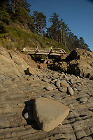 Kalaloch Beach 4, Olympic Peninsula, Washington, US