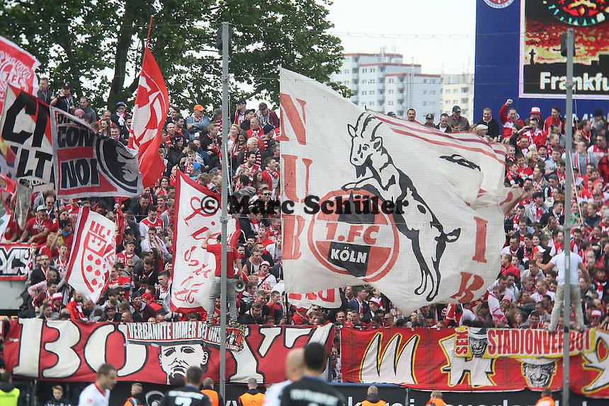 Fans aus Koeln feiern - FSV Frankfurt vs. 1. FC Koeln, Frankfurter Volksbank Stadion