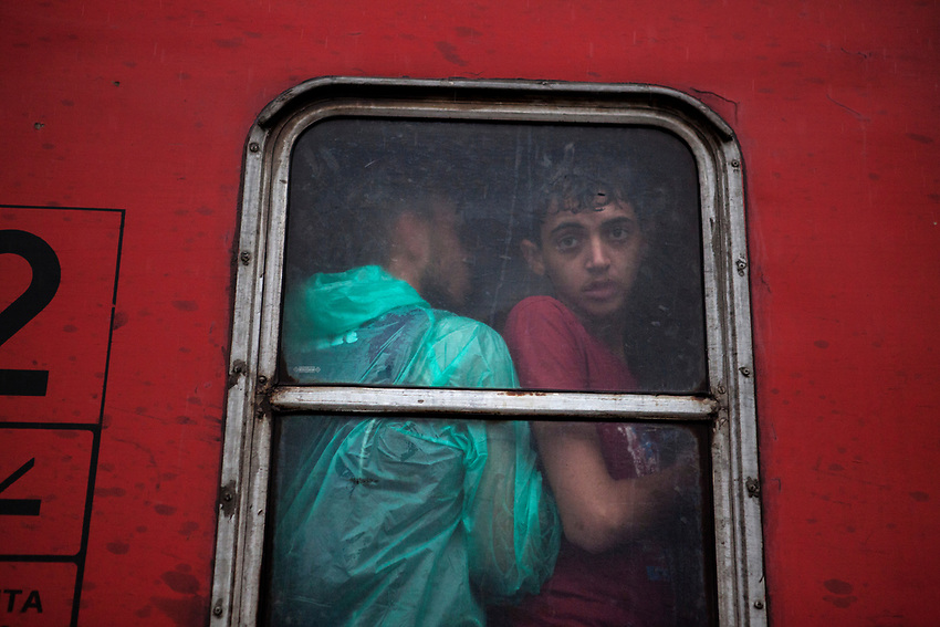 Refugees at the UNHCR Registration centre in Gegeliya , board a train that will take them to the Serbia border with Macedonia. The boarding was chaotic as it poured down with heavy rain. Refugees at Gevgelija Border Crossing Macedonian Side.