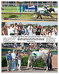 2004-05-29