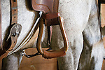 Leather stirrup