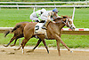 Giant Sensation winning at Delaware Park on 5/21/12
