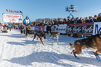 DagTorulf Olsen runs down the start chute lined with spectators during the Ceremonial Start of the 2016 Iditarod in Willow, Alaska.  March 06, 2016