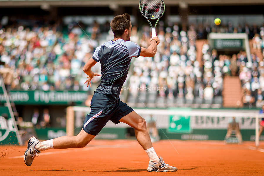 May 29, 2015: Damir DZUMHUR of Bosnia and Herzegovina in action in a 3rd round match against Roger FEDERER of Switzerland on day six of the 2015 French Open tennis tournament at Roland Garros in Paris, France. Sydney Low/AsteriskImages