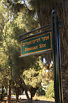 Israel, Jerusalem mountains, the Dinosaur site in Beit Zait