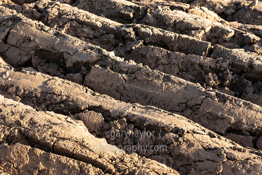 Heavy land ploughed wet after heavy rainfall - Lincolnshire, December