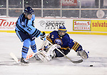 2013.12.15 - St. Michaels vs Buffalo Jr Sabres