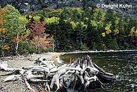 KN02-001g  Mt. Kineo on Moosehead Lake, Maine - driftwood on Cliff Beach