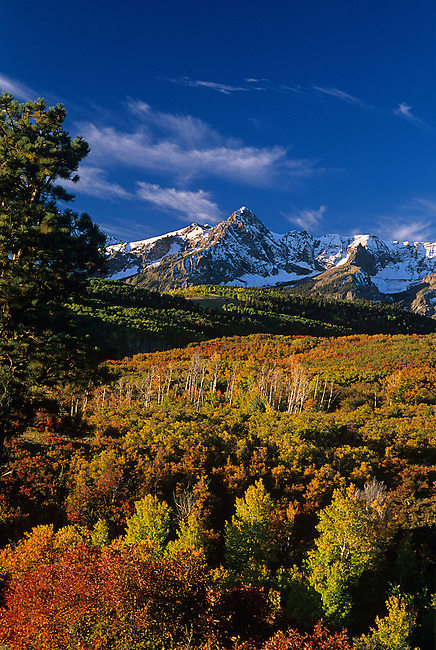 Autumn Colors, Sneffels Mountain Range, Colorado