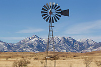 1/2/2011-  Arizona's Wine Country is located in the high desert in Sonoita, Arizona. (Photo by Pat Shannahan)