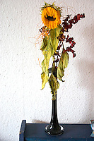 Wilted sunflower bouquet in a vase. Concept - retirement obsolete. Balucki District Lodz Central Poland