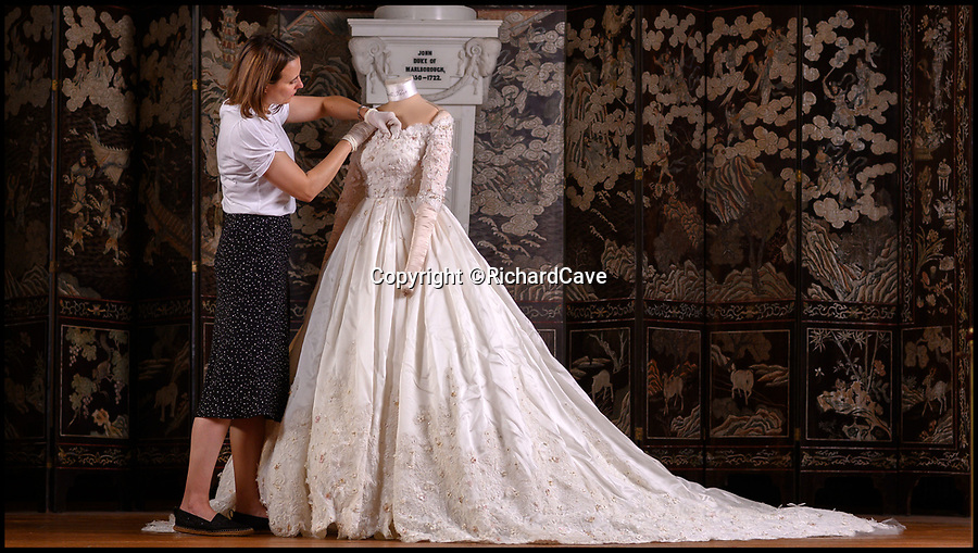 BNPS.co.uk (01202 558833)<br /> Pic: RichardCave/BlenheimPalace<br /> <br /> Assistant House manager Carmen Alvarez prepares the dress for the public to view.<br /> <br /> The stunning wedding dress worn by Camilla Thorp on her marriage to Lord George Blandford, heir to the Duke of Marlborough, has just gone on display at Blenheim Palace in Oxfordshire.<br /> <br /> The first bespoke Dolce & Gabbana bridal gown ever to have been worn in Britain, Lady Blandford made several visits to the Milan fashion house prior to her lavish September wedding last year.<br /> <br /> The dress, which is on display in the Palace's Long Library, features an off-the-shoulder lace bodice with tiny, pale pink and white appliqued flowers and seed pearls. <br /><br />The skirt is made up of layers of tulle for volume and topped with organza. Lace is also featured on the hem of the skirt and around the edge of the silk tulle veil.