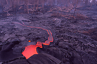Tube breakout sends a stream of lava towards the forest, Hawaii Volcanoes National Park, Big Island, Hawaii, USA