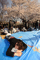 Taking a break from cherry blossom viewing, Ueno Park, Tokyo, Japan, April 3, 2010.