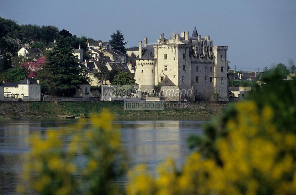 Europe/France/Pays de la Loire/Maine-et-Loire/Montsoreau : Le Château de Montsoreau et la Loire