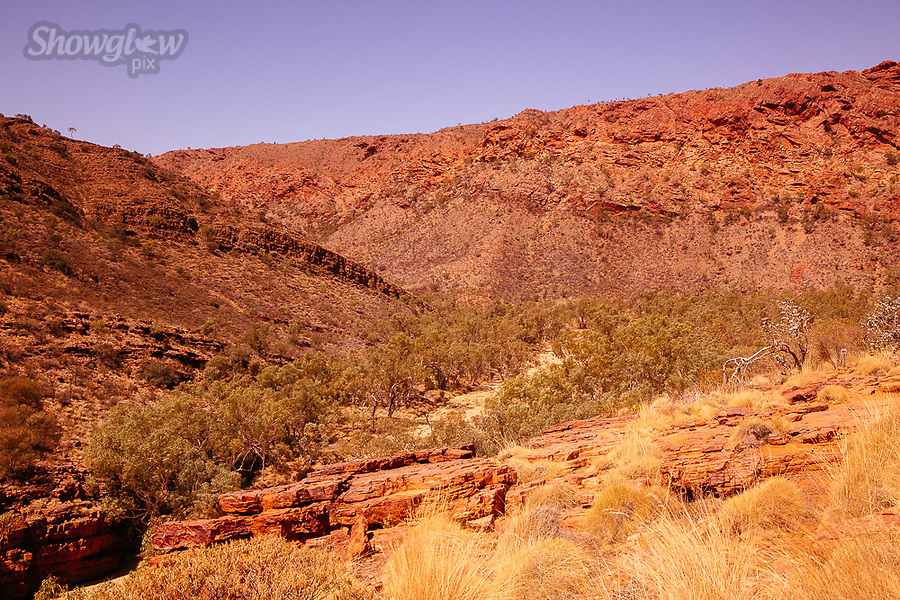 Image Ref: CA710<br />