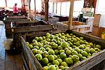 Peaks of Otter Winery is one of the businesses at Johnson Orchards, and shares the space with the family fruit farm business.